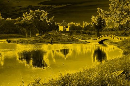 flickr-40000532540.jpg
